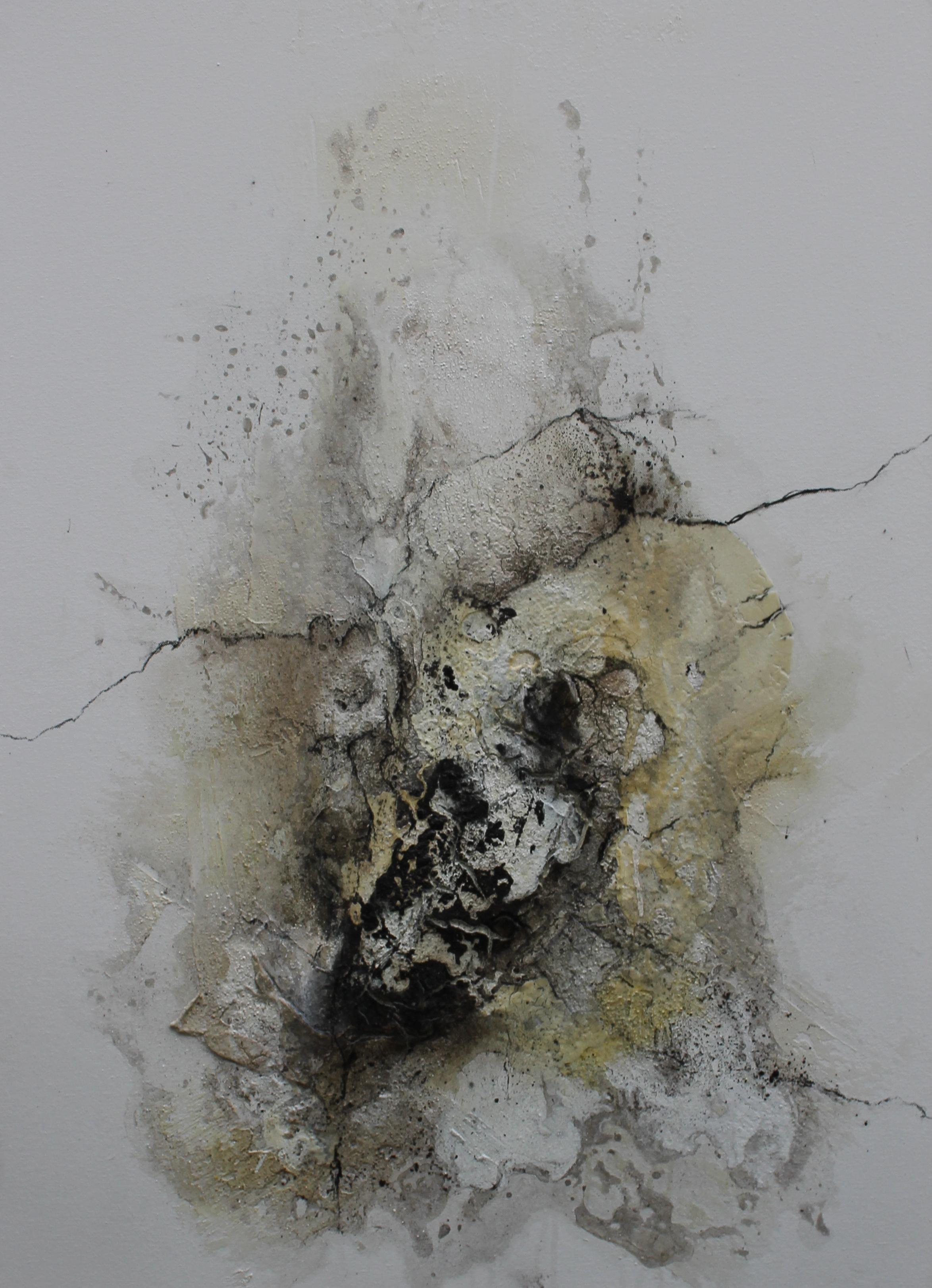 Werknr. 119_o.T._Marmormehl, Öl, Beize, Tusche, Kohle, Pigmente auf Leinwand_60x90 cm_2013
