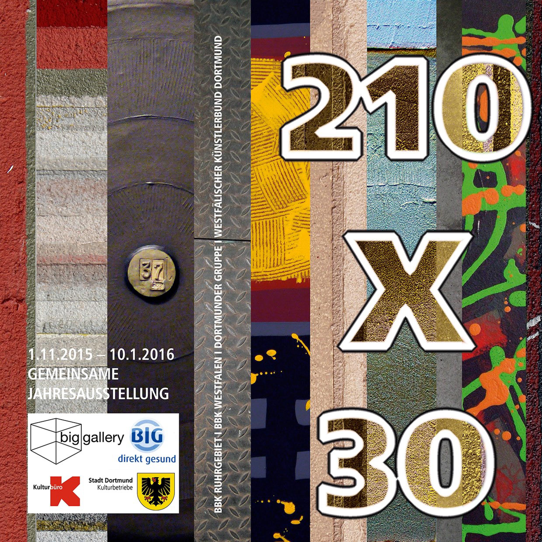 210x30-web-1